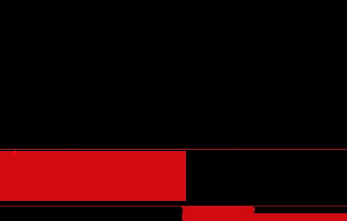 Martijn van Roon